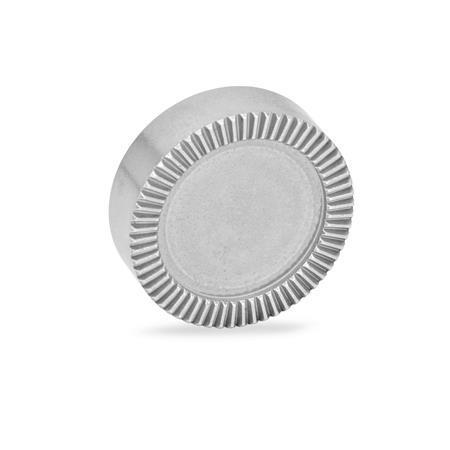 GN 187.4 Rastscheiben, Edelstahl Form: E - ohne Bohrungen blank, nicht gehärtet