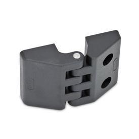 GN 155 Scharniere, Kunststoff Form: E - 2x Gewindesacklöcher / 2x Bohrungen für Zylinderschrauben