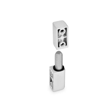 GN 161.1 Hinges, zinc die casting, detachable Color: SR - silver, RAL 9006, textured finish