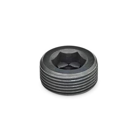GN 252 Blanking plugs, Steel Type: A - without thread coating