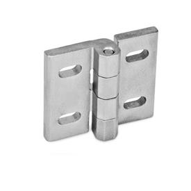 GN 235 Stainless Steel-Hinges, adjustable Material: NI - Stainless Steel<br />Type: B - vertically adjustable<br />Finish: GS - matte shot-blasted