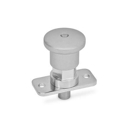GN 822.9 Edelstahl-Miniraster, mit und ohne Rastsperre Form: BN - ohne Rastsperre, mit Edelstahl-Knopf