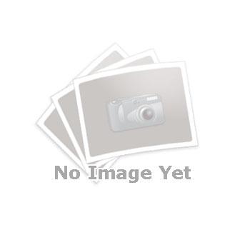 GN 875 Kääntyvät puristimet, pneumaattiset, lohkoversio Tyyppi: A - Kiinnitysvarsi pitkittäisreiällä ja kahdella laipallisella aluslevyllä