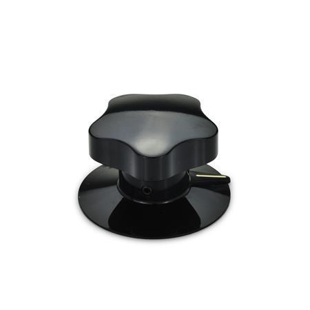 GN 5338 Einstellgriffe, Kunststoff Form: S - mit Zeigerscheibe