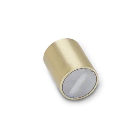 GN 54.1 Retaining magnets, smooth finish, Brass Material of the magnet: SC - SmCo