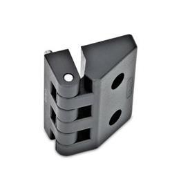 GN 154 Scharniere, Kunststoff Form: F - 2x Gewindestifte / 2x Bohrungen für Zylinderschrauben