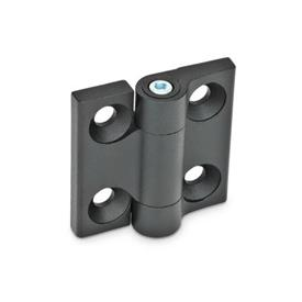 GN 437 Hinges Finish: SW - black, RAL 9005, textured finish