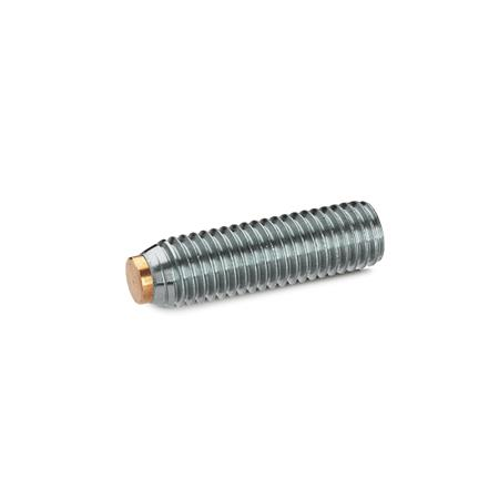 GN 913.5 Grub screws with brass / plastic pivot, Stainless Steel Material (pivot): MS - Brass