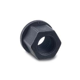 DIN 6331 Hexagon nuts with Collar